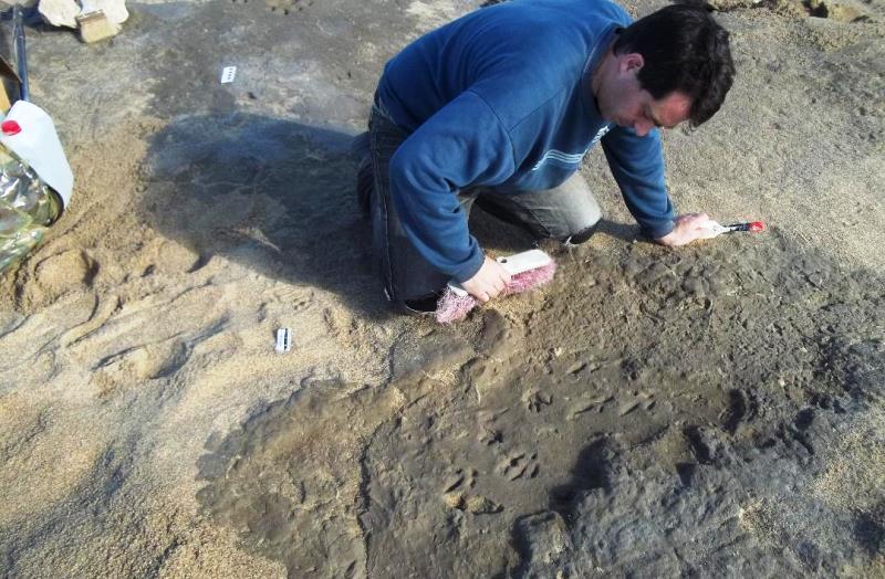 miramar-Mariano Magnussen exhumando las huellas fosiles