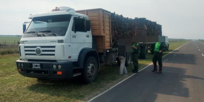 pumas-camion