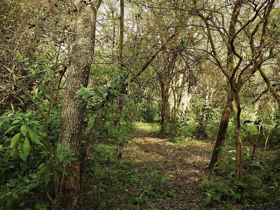 reserva-natural7