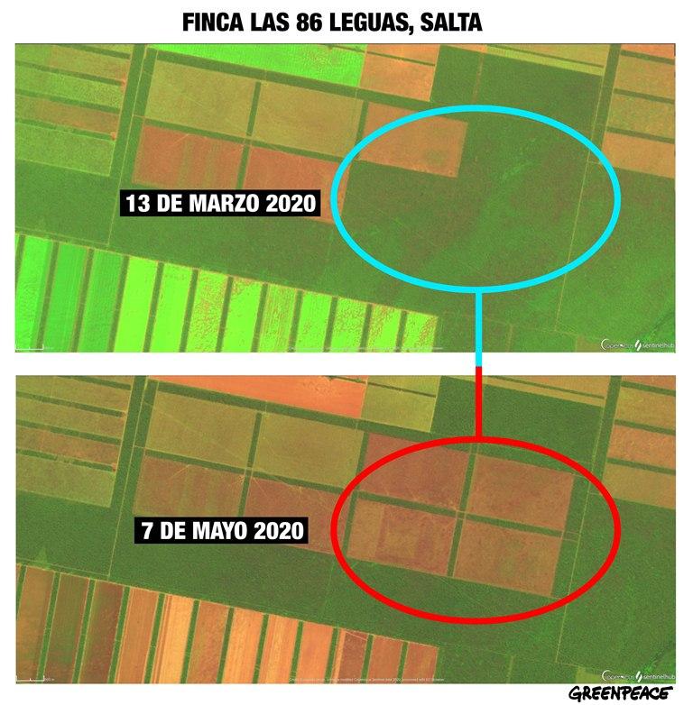 Comparativa Satelitales Finca Las 86 Leguas