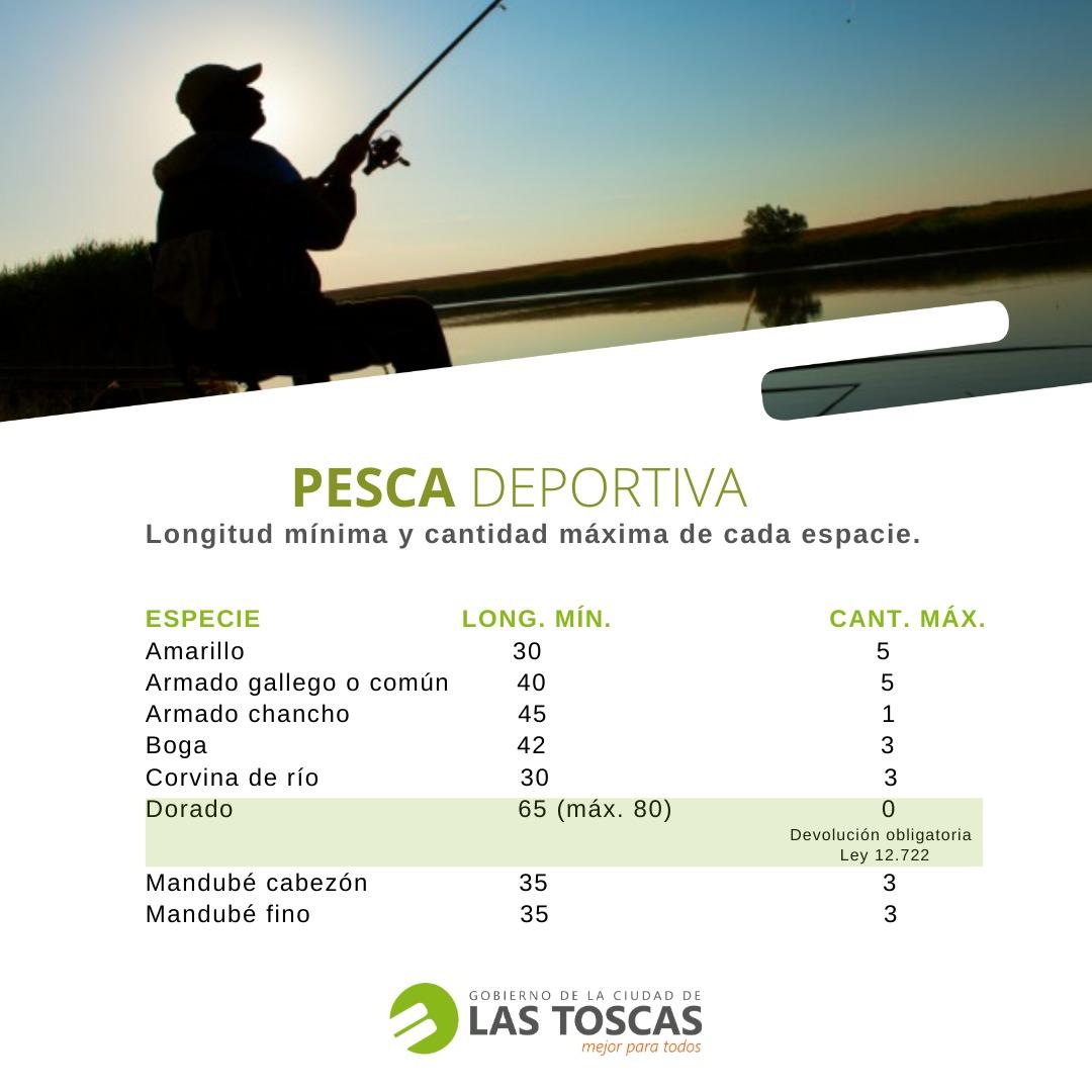 pesca dep2
