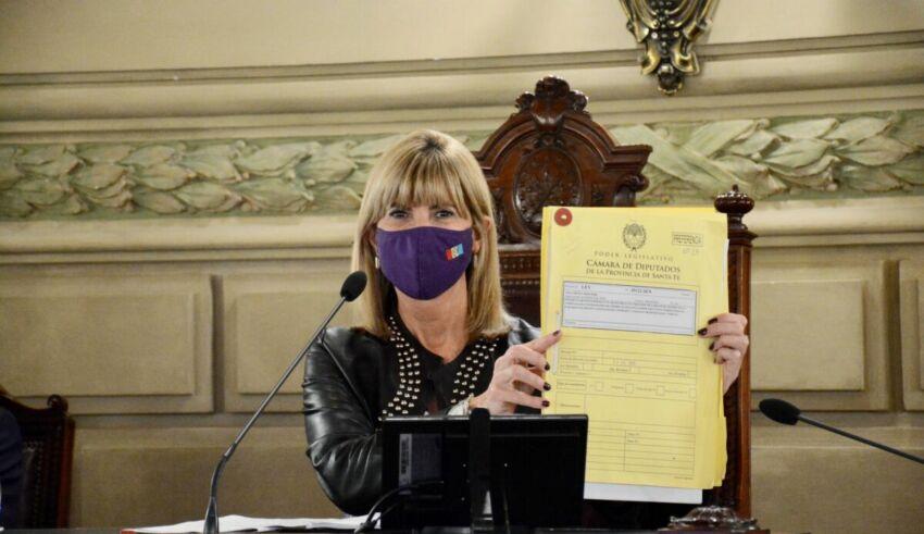 """La vicegobernadora de Santa Fe, Alejandra Rodenas, resaltó """"la lucha del movimiento de mujeres, la constancia y pasión de compañeras de diferentes sectores políticos""""."""
