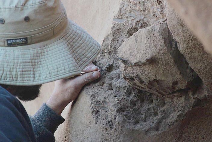 Excavación paleontologica en la futura reserva natural de Centinela del Mar