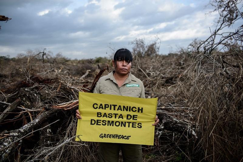 Desmonte Chaco (3)